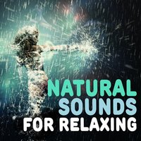 Natural Sounds for Relaxing — Sleep Music with Nature Sounds Relaxation