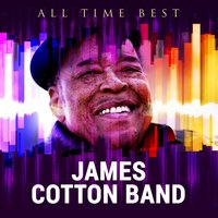 All Time Best: James Cotton Band — James Cotton Band