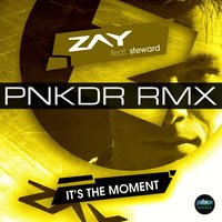 It's the Moment — Steward, Zay