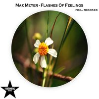 Flashes of Feelings — Max Meyer