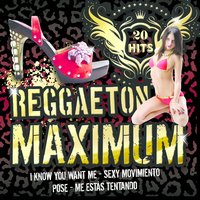 Reggaeton Maximum — Reggaeton Latino