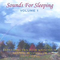 Sounds For Sleeping Volume 1 — Perry Rotwein