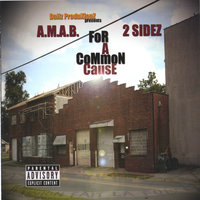 A.M.A.B. / 2 Sidez: For A Common Cause — сборник