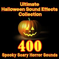 Ultimate Halloween Sound Effects Collection – 400 Spooky Scary Horror Sounds — Dr. Sound Effects