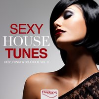 Sexy House Tunes - Deep, Funky & Delicious, Vol. 3 — сборник
