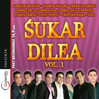 Sukar Dilea Vol.1 (Pure Madness Vol.1) — сборник