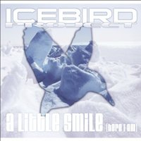A Little Smile — Icebird Project
