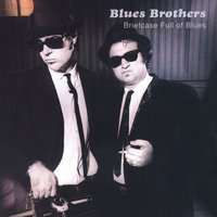 Briefcase Full Of Blues — The Blues Brothers