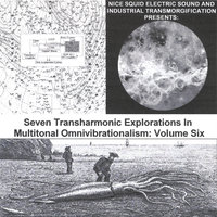 Seven Transharmonic Explorations in Multitonal Omnivibrationalism, Vol. Six (Nice Squid Electric SOund and Industrial Transmorgification Presents) — Glenn Weyant