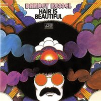 Hair Is Beautiful — Barney Kessel