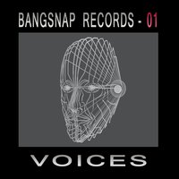 Bangsnap Records 01 - Voices — сборник