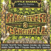 Ragga Fever Dance Hall, Vol. 3 — сборник