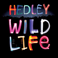 Wild Life — Hedley