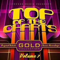 Immense Media Presents - Top of the Charts, Vol. 07 — сборник