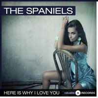 Here Is Why I Love You — The Spaniels