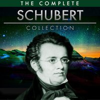 The Ultimate Schubert Collection — London Festival Orchestra, Michel Simone, Munich Symphony Orchestra, Hamburg Symphony Orchestra, Schubert Ensemble Of Vienna, Франц Шуберт
