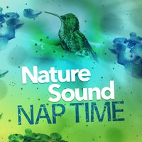 Nature Sound Nap Time — Nature Sounds Sleep