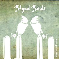 Sure for Certain — Blynd Birds