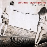 Don't Think I Could Forgive You (They Will All Heal) — Robin Berrygold