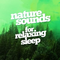 Nature Sounds for Relaxing Sleep — Nature Sounds for Sleep and Relaxation, Nature Sounds Relaxation: Music for Sleep, Meditation, Massage Therapy, Spa, Nature Sounds Nature Music, Nature Sounds Relaxation: Music for Sleep, Meditation, Massage Therapy, Spa|Nature Sounds for Sleep and Relaxation|Nature Sounds Nature Music