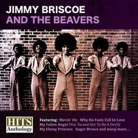 Hits Anthology — Jimmy Briscoe And The Beavers