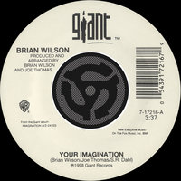 Your Imagination / Your Imagination [A Cappella] — Brian Wilson