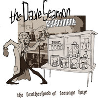 The Brotherhood of Teenage Haze — The Dave Seamon Experiment