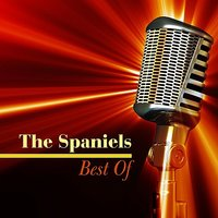 Best of — The Spaniels