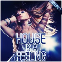 House Is a Feeling, Vol. 7 — сборник