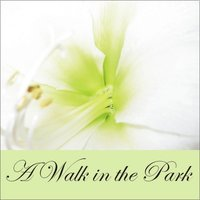 A Walk in the Park — Benno Wagner