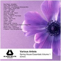 Spring House Essentials, Vol. 1 — сборник