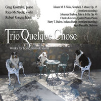 Works for Horn, Piano & Violin — Trio Quelque Chose