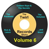 Twirl Records Story Volume 6 — сборник