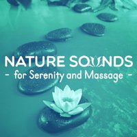 Nature Sounds for Serenity and Massage — Massage Tribe