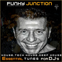 Sheeva Records Featuring Funky Junction Essential Tunes for DJ's — сборник