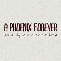 With or Without — A Phoenix Forever
