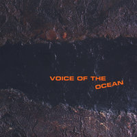 Voice Of The Ocean — Luca Zamponi