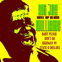 Best of Blues — Big Joe Williams