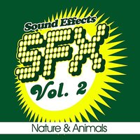 SFX, Vol. 2 - Nature & Animals — Sound EFX