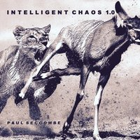 Intelligent Chaos 1.0 — Paul Seccombe