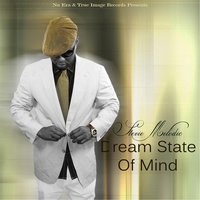 Dream State of Mind — Stevie Melodic