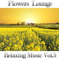 Flowers Lounge, Vol. 3 — Fly Project