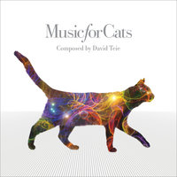 Music For Cats — David Teie