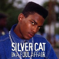 In A Foul Affair — Silver Cat