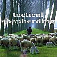 Tactical Shepherding — Funkocrat
