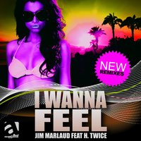 I Wanna Feel — Jim Marlaud, H.Twice