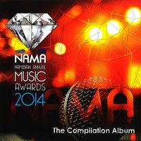 NAMA Namibian Annual Music Awards 2014 (The Compilation Album) — сборник