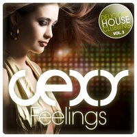 Sexy Feelings - Delicious House Clubbing, Vol. 3 — сборник