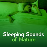 Sleeping Sounds of Nature — Sleep Sounds Of Nature