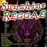 Sunshine Reggae — The Rasta Boys